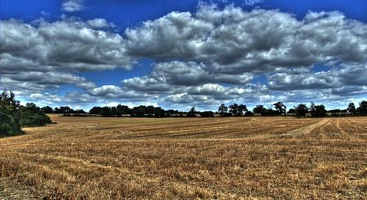 Passive Income - June 2013 - Field and Sky